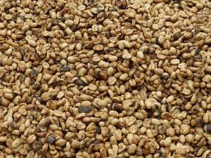 coffee-beans-280733_640